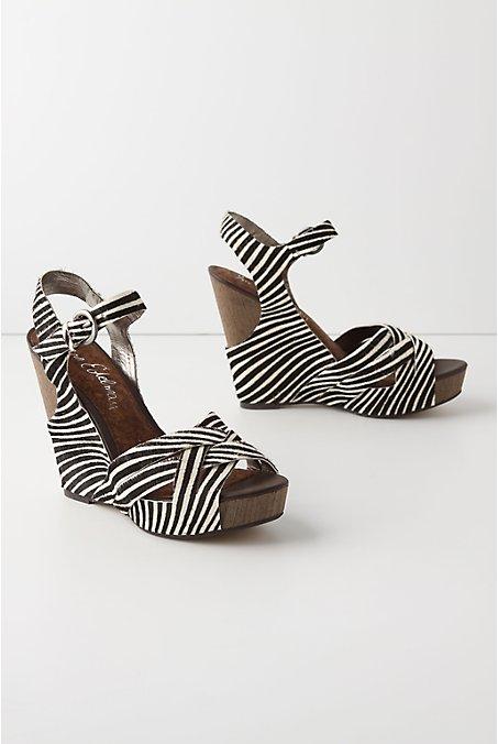 Zebrad